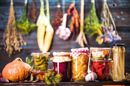 Probiotika Fermentierte Lebensmittel